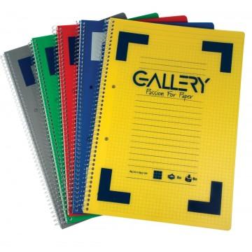 Gallery Traditional spiraalschrift A4, gelijnd, geassorteerde kleuren, 160 bladzijden